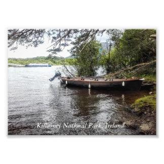 Killarney National Park, Ireland Photo Art