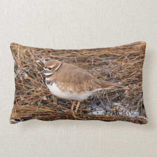 Killdeer in the Freezing Mudflats Lumbar Cushion