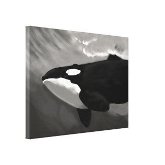 killer whale black and white gallery wrap canvas