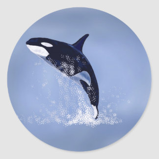 Killer Whale Classic Round Sticker