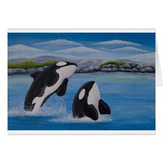Killer Whale (Orca) Card