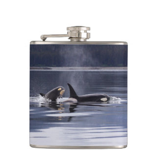 Killer Whales Hip Flask