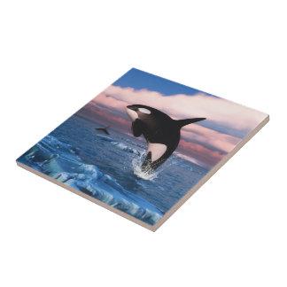 Killer whales in the Arctic Ocean Ceramic Tile