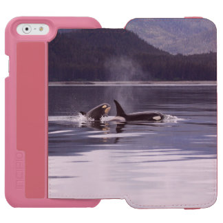 Killer Whales Incipio Watson™ iPhone 6 Wallet Case