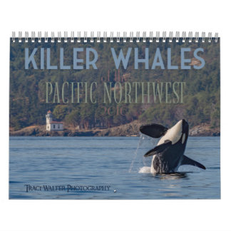 Killer Whales of the Pacific Northwest - Calendar
