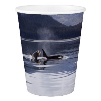 Killer Whales Paper Cup