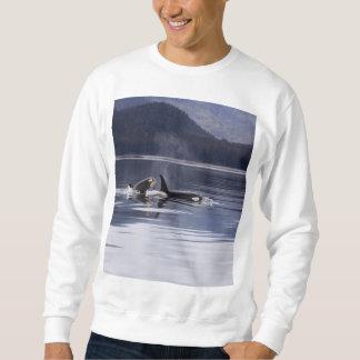 Killer Whales Sweatshirt