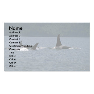 Killer Whales swimming at surface Pack Of Standard Business Cards