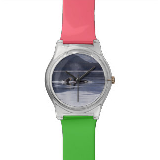 Killer Whales Wrist Watches
