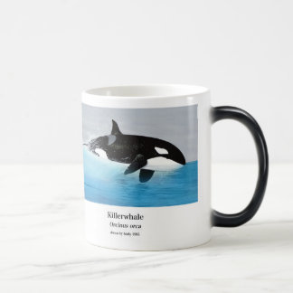 Killerwhale and Orcinus orca Magic Mug