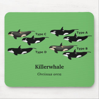 Killerwhale and Orcinus orca Mouse Pad