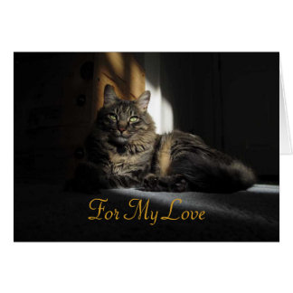 Kimber Cat Slivers of Sunlight Anniversary Card