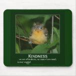 Kindness Baby Oriole Motivational Mousepad