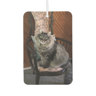 King Cat Kimber Car Air Freshener