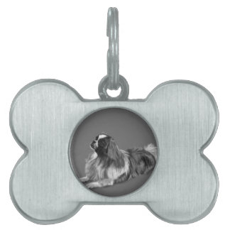 King Charles Spaniel Pet Tags