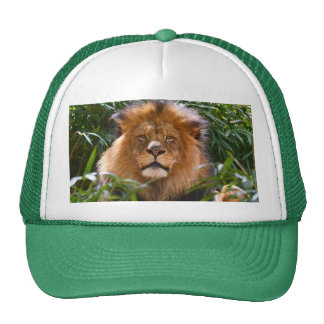 King of the Beasts baseball cap Trucker Hat