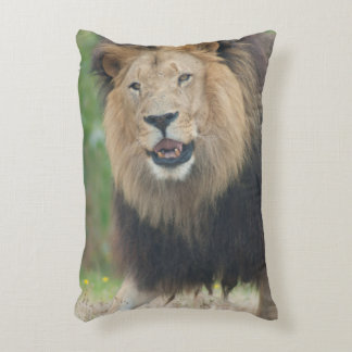 King of the Beasts Fierce African Lion walking Accent Cushion