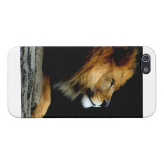 King of the beasts case for the iPhone 5