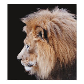 King Of The Beasts Print