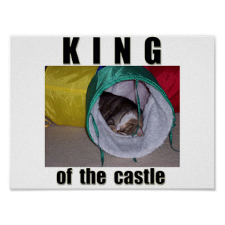 King of the Castle Posters