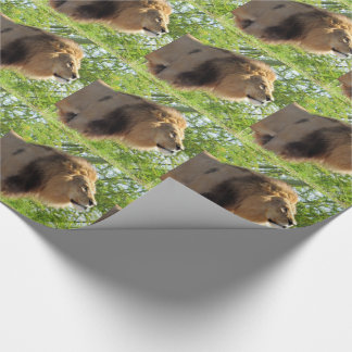 King of the Jungle (Lion) Wrapping Paper