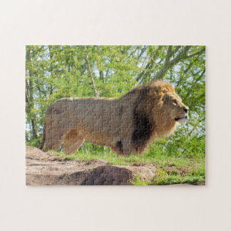 King of the Jungle Puzzle (Lion)