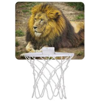 King of the Zoo Basketball Hoop