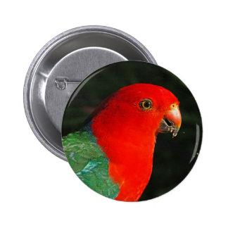 King Parrot Pin