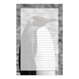 King Penguin, Salisbury Plain, South Georgia Stationery Design