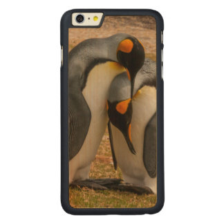 King penguins caressing, Falkland Carved® Maple iPhone 6 Plus Case