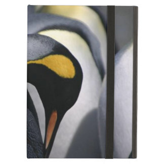King Penguins Powis iCase iPad Cases