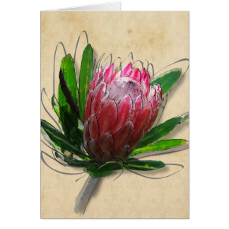 King Protea Flower Card