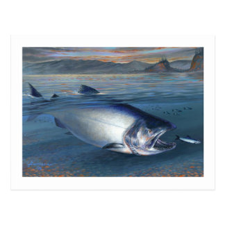 King Salmon Postcard
