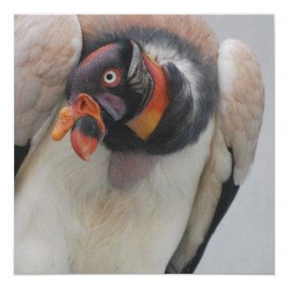 King Vulture Invites