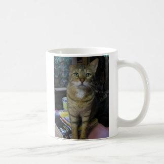 kingfish coffee mug