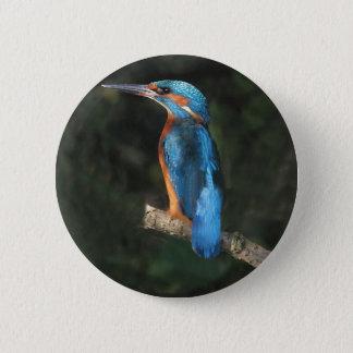 Kingfisher 6 Cm Round Badge