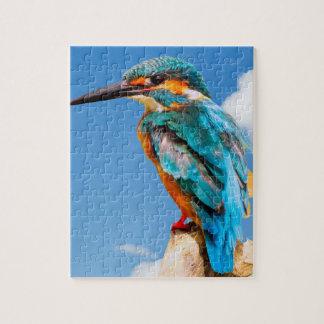 Kingfisher Bird Jigsaw Puzzle