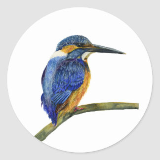 Kingfisher Bird Watercolor Halcyon Bird Classic Round Sticker