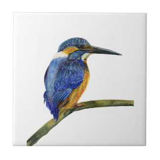 Kingfisher Bird Watercolor Halcyon Bird Tile