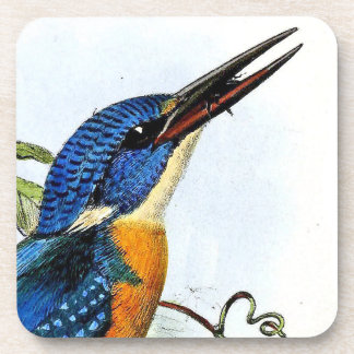 Kingfisher Bird Wildlife Animal Pond Coaster