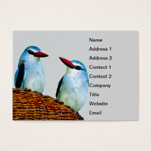 Africa business cards business card printing zazzle kingfisher birds south africa business card colourmoves Choice Image