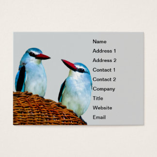 Kingfisher Birds South Africa Business Card