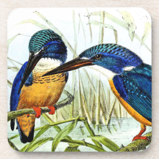 Kingfisher Birds Wildlife Animal Pond Coaster