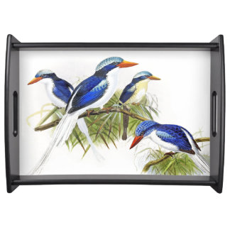 Kingfisher Birds Wildlife Animal Pond Serving Tray