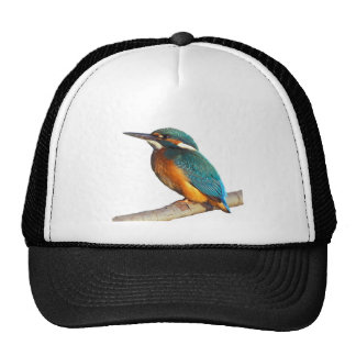 """""""Kingfisher"""" design products Cap"""