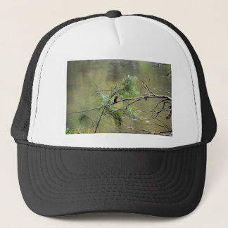 KINGFISHER EUNGELLA NATIONAL PARK AUSTRALIA TRUCKER HAT