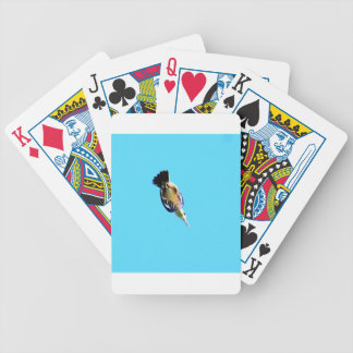 KINGFISHER IN FLIGHT QUEENSLAND AUSTRALIA BICYCLE PLAYING CARDS