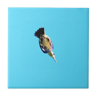 KINGFISHER IN FLIGHT QUEENSLAND AUSTRALIA SMALL SQUARE TILE