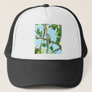 KINGFISHER IN FLIGHT QUEENSLAND AUSTRALIA TRUCKER HAT