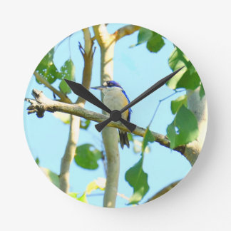 KINGFISHER IN FLIGHT QUEENSLAND AUSTRALIA WALL CLOCK
